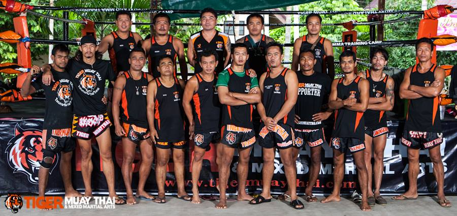Tiger muay thai in Phuket